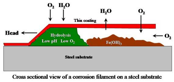 Different Types of Corrosion: Filiform Corrosion or